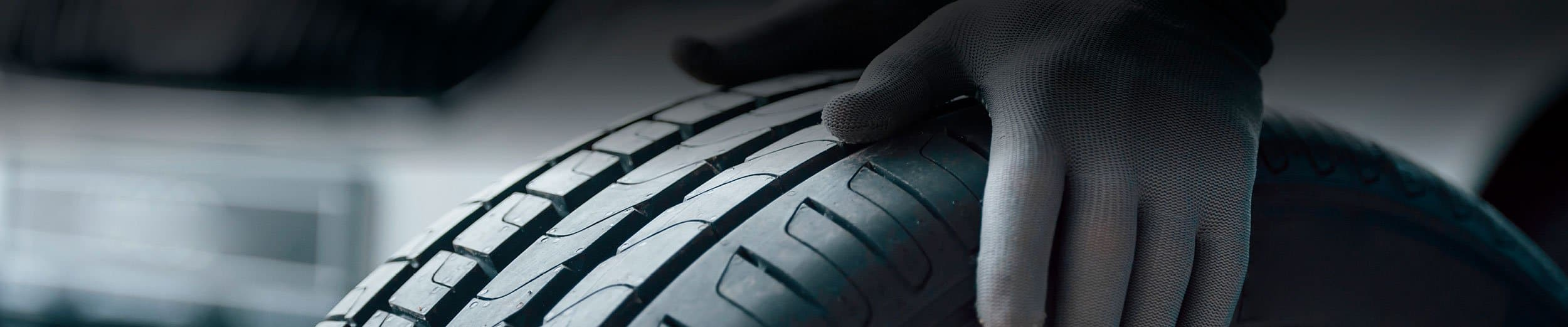 neumáticos en sanabria